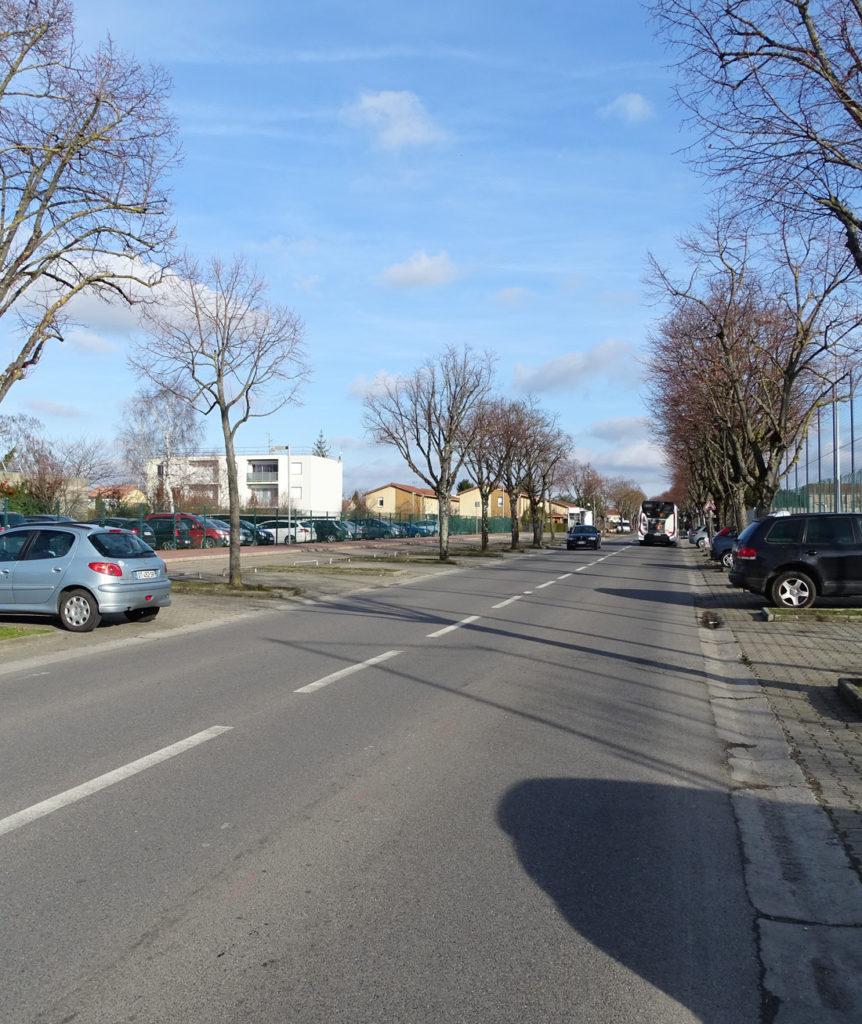 avenue tilleuls